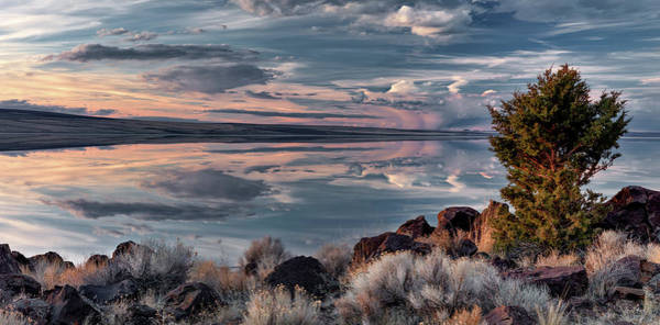 Photograph - Lake Abert 6 by Leland D Howard