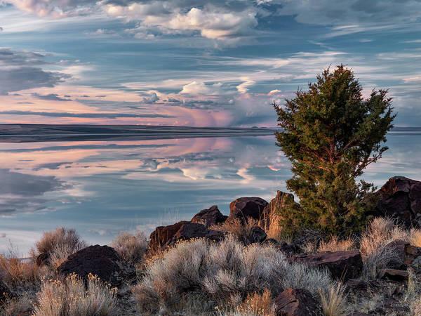 Magnificence Wall Art - Photograph - Lake Abert 8 by Leland D Howard