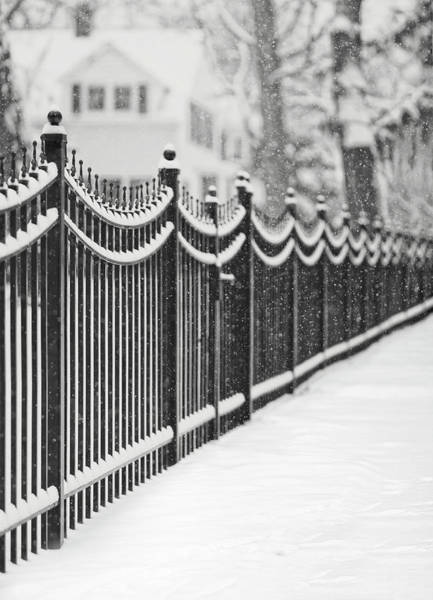 Covering Photograph - Lake Bluff Illinois, Iron Fence Covered by Trina Dopp Photography