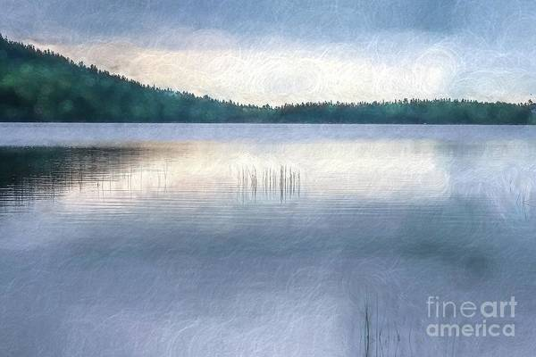 Wall Art - Digital Art - Lake Eagle  by Patricia Hofmeester