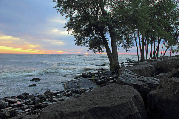 Photograph - Lake Erie Shore by Angela Murdock