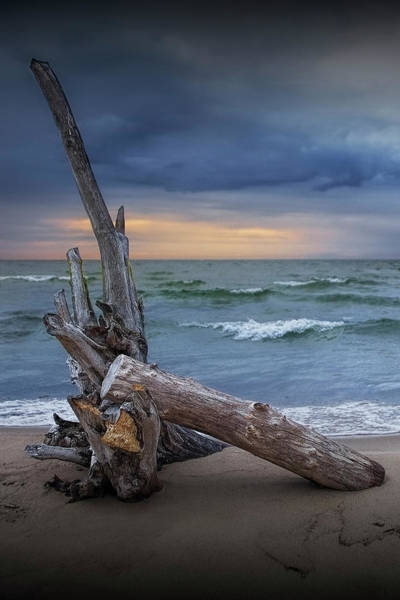 Wall Art - Photograph - Lake Huron Sunrise On The Beach With Driftwood At Oscoda Michiga by Randall Nyhof