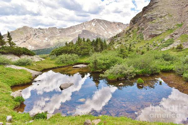 Photograph - Lake In The Wilderness 3 by Tonya Hance