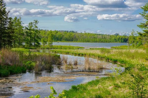 Photograph - Lake Itasca Beauty by Susan Rydberg