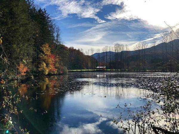 Photograph - Lake Logan by Flavia Westerwelle