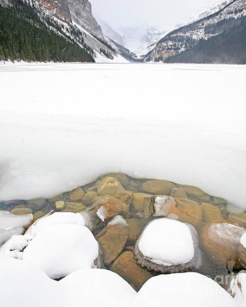 Photograph - Lake Louise by Darrel Giesbrecht