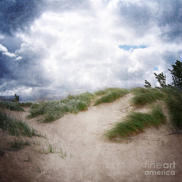 Lake Michigan Sand Dunes Art Print