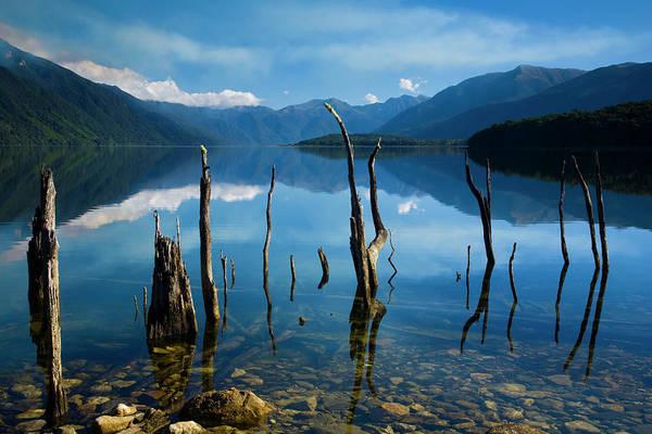 Bleached Photograph - Lake Monowai, Fiordland National Park by Jason Friend