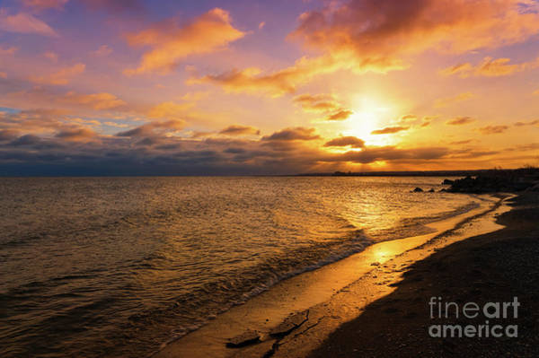 Photograph - Lake Ontario Colorful Dawn by Rachel Cohen