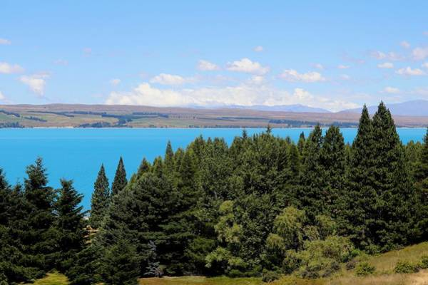 Photograph - Lake Pukaki, New Zealand by Sarah Lilja