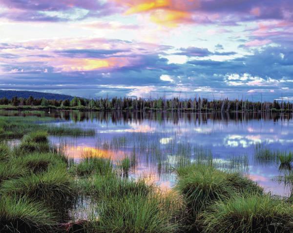 Photograph - Lake Reflections by Leland D Howard