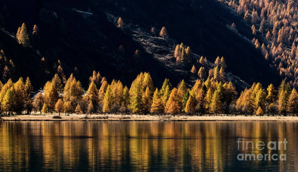 Wall Art - Photograph - Lake Sils by DiFigiano Photography