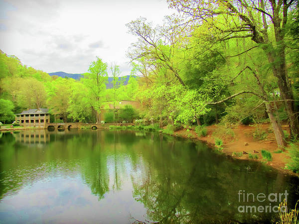 Photograph - Lake Susan At Black Mountain by Roberta Byram