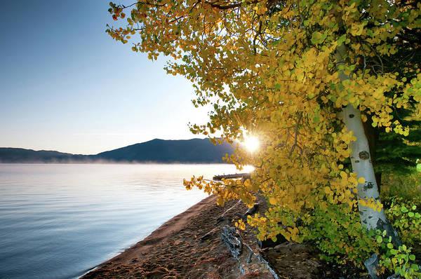 Lake Tahoe Photograph - Lake Tahoe Fall Color by Dsafanda