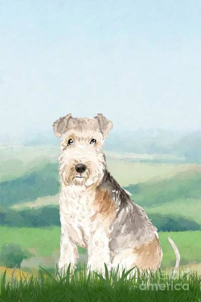 Pedigree Painting - Lakeland Terrier by John Edwards