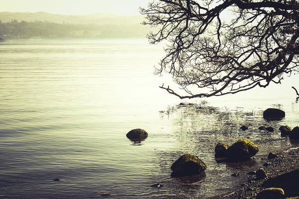 Lakeside Wall Art - Photograph - Lakeside 3 by David Ridley