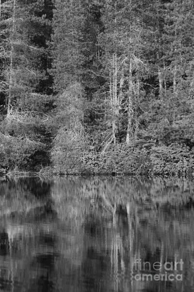 Photograph - Lakeside Bliss by Jeni Gray