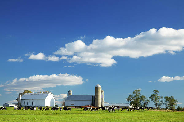 Lancaster County Photograph - Lancaster County Farm by Beklaus