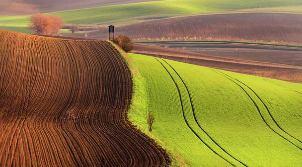 Photograph - Land Of Carpets by Vlad Sokolovsky