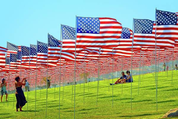 Photograph - Land Of The Free by Lynn Bauer