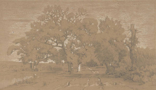 Drawing - Landscape, 1842 by Theodore Rousseau
