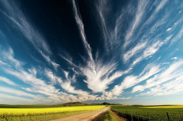 Field Trip Photograph - Landscape Image Of A Farm With A Cloudy by Subman