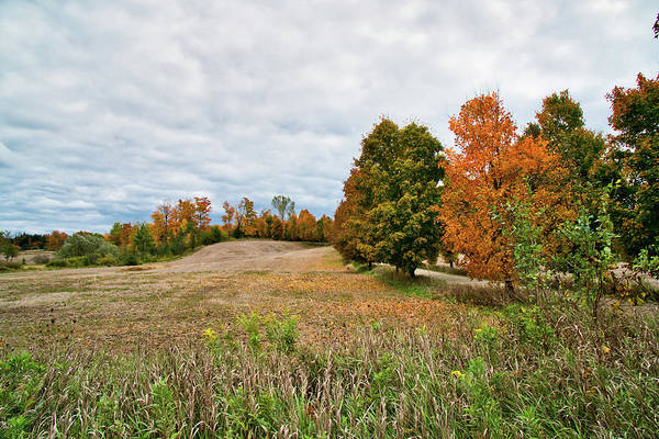 Photograph - Landscape In The Fall by Nick Mares