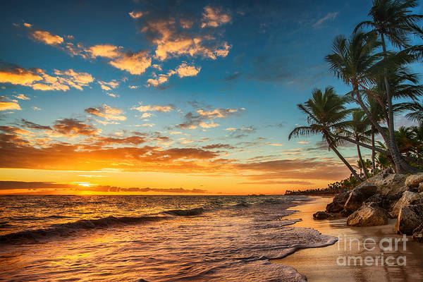 Tropical Plants Photograph - Landscape Of Paradise Tropical Island by Valentin Valkov