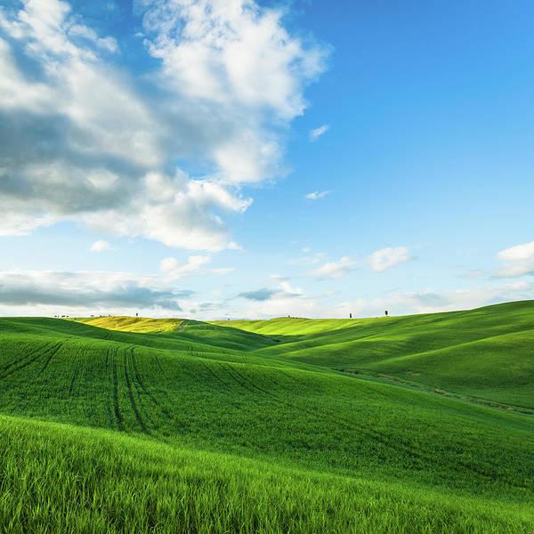 Photograph - Landscape Tuscan Hills by Deimagine