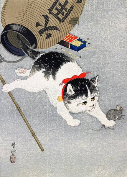 Wall Art - Painting - Lantern And Cat by Ohara Koson