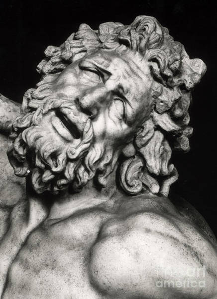 Wall Art - Sculpture - Laocoon by Greek School