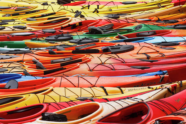 Wall Art - Photograph - Large Pattern Of Sea Kayaks, Rockport by Adam Jones