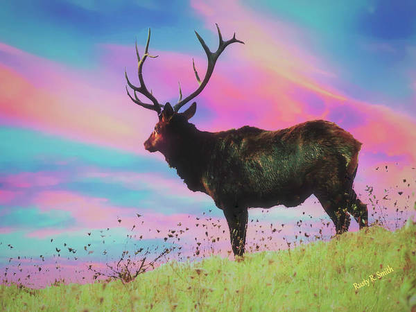 Digital Art - Large Pennsylvania Bull Elk Standing Alone. by Rusty R Smith