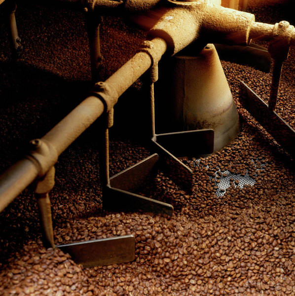 Coffee Photograph - Large Scale Coffee Roaster Roasting by Norman Hollands