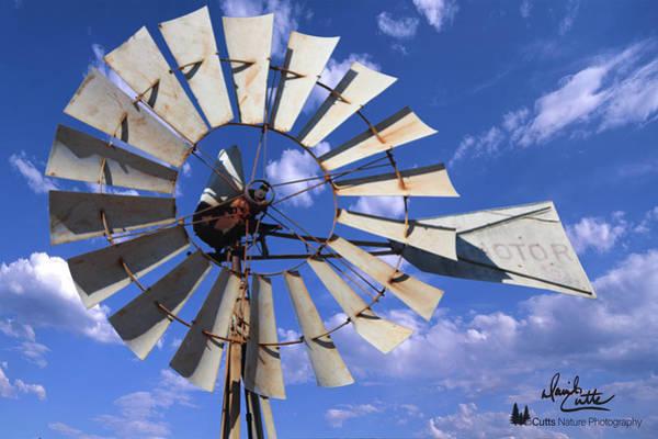 Photograph - Large Windmill by David Cutts