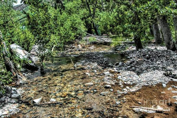 Photograph - Larger Creek by Joe Lach