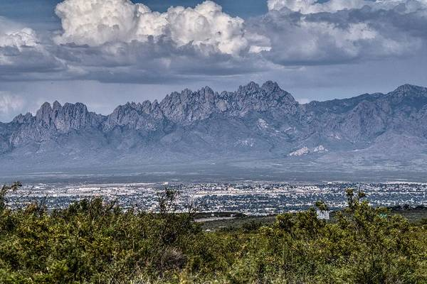 Photograph - Las Cruces, New Mexico Skyline by Chance Kafka