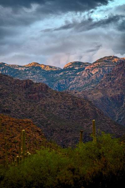 Photograph - Last Light On Mount Lemmon From Sabino Canyon by Chance Kafka