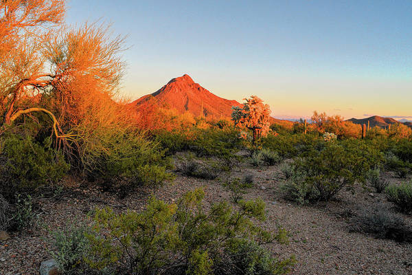 Photograph - Last Light On The Tucson Mountains by Chance Kafka