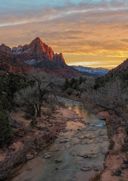 Photograph - Last Light On The Watchman by Loree Johnson