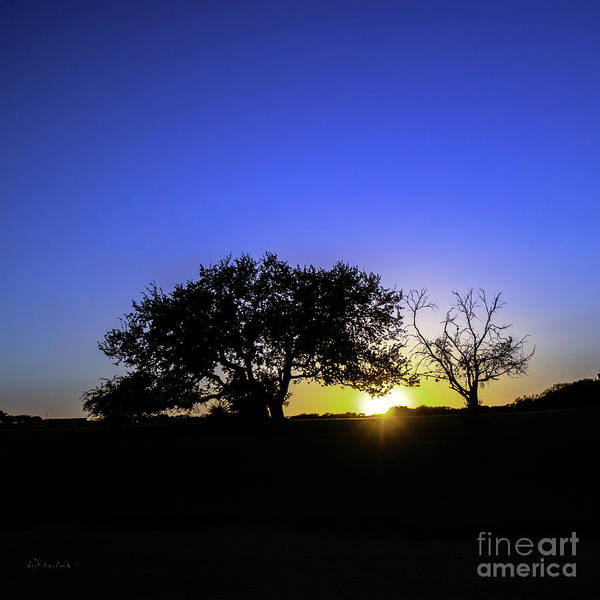 Photograph - Last Light Texas Hill Country Paradise Canyon Sunset 8053c by Ricardos Creations