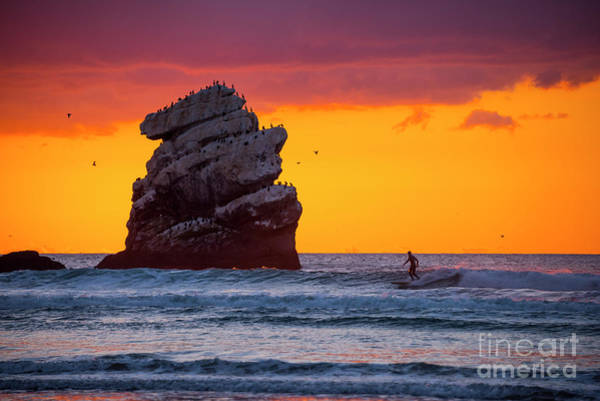 Photograph - Last Surf by Peng Shi