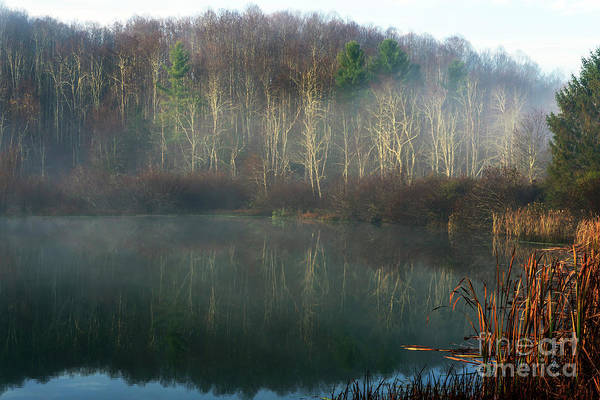Photograph - Late Autumn Mist On Lake by Thomas R Fletcher