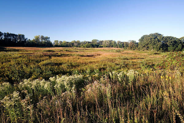 Elgin Photograph - Late Summer At The  Fen by Stevegeer