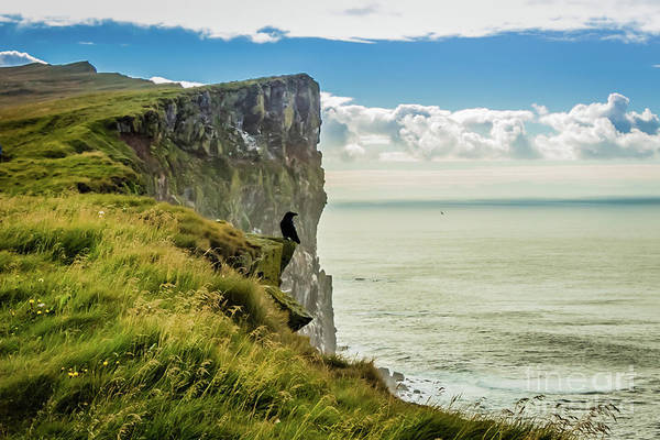 Photograph - Latrabjarg Cliffs, Iceland by Lyl Dil Creations