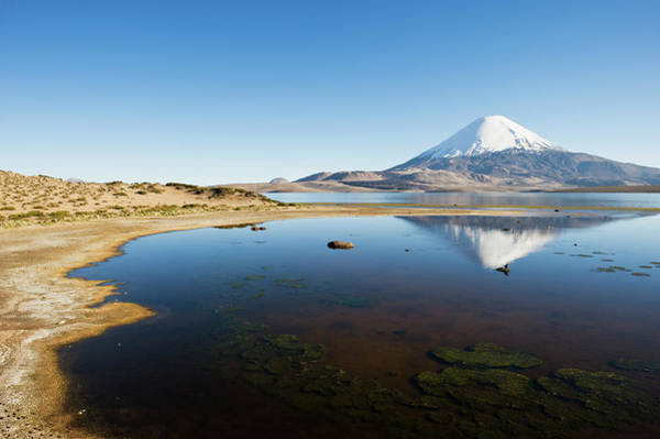 Arica Photograph - Lauca National Park by Gabrielle Therin-weise