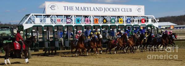 Wall Art - Photograph - Laurel Park - Starting Gate by Anthony Schafer