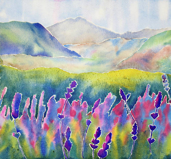 Experiment Painting -  Fresh Lavender by Mary Giacomini