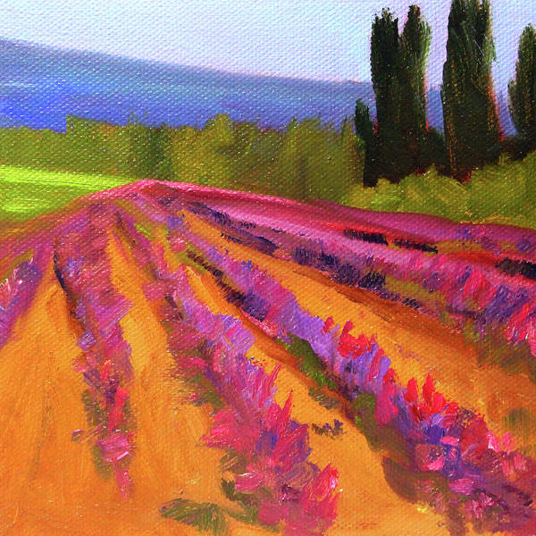 Wall Art - Painting - Lavender Country by Nancy Merkle