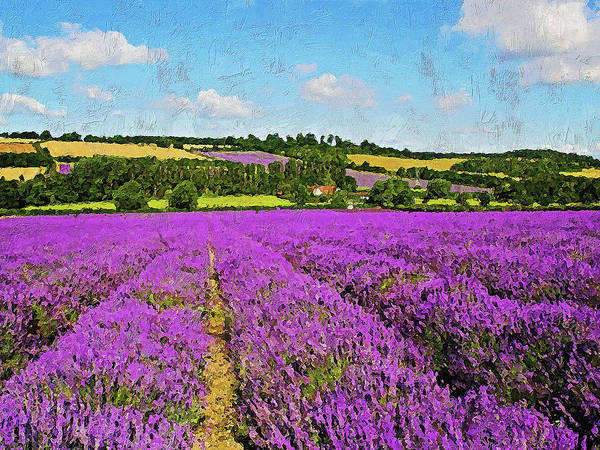 Painting - Lavender Fields - 01 by Andrea Mazzocchetti